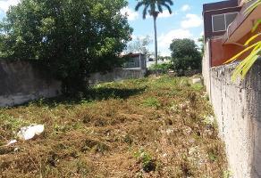 Foto de terreno habitacional en venta en  , garcia gineres, mérida, yucatán, 11742659 No. 01