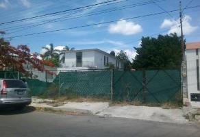 Foto de local en renta en  , garcia gineres, mérida, yucatán, 14047267 No. 01