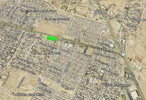 Foto de terreno comercial en renta en general santiago vidaurri , división del norte, mexicali, baja california, 8385347 No. 01