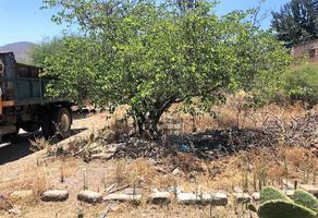 Foto de terreno habitacional en venta en geranios 0, las flores, tlajomulco de zúñiga, jalisco, 0 No. 02