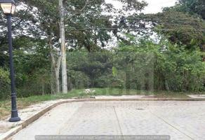 Foto de terreno habitacional en venta en gloria guevara manzon s/n , el haya, xico, veracruz de ignacio de la llave, 0 No. 01