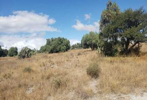 Foto de terreno habitacional en venta en golondrina sn , san miguel bocanegra, zumpango, méxico, 18721757 No. 01