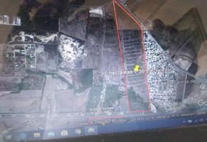 Foto de terreno habitacional en venta en gortari , salinas de gortari, cadereyta jiménez, nuevo león, 16092988 No. 01