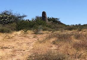 Foto de terreno comercial en venta en goteras de aldama , aldama, irapuato, guanajuato, 17768447 No. 01