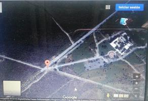 Foto de terreno habitacional en venta en  , gral. zuazua, general zuazua, nuevo león, 13982794 No. 01
