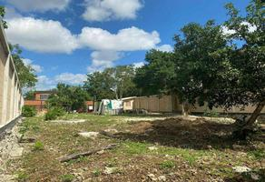 Foto de terreno habitacional en venta en  , gran santa fe, benito juárez, quintana roo, 0 No. 01