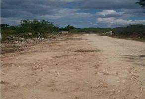 Foto de terreno habitacional en venta en  , gran santa fe, mérida, yucatán, 7619635 No. 01