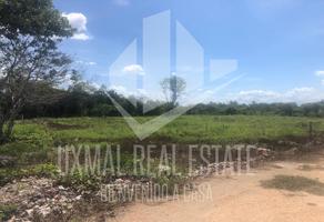 Foto de terreno habitacional en venta en  , gran santa fe, mérida, yucatán, 14119020 No. 01