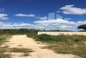 Foto de terreno habitacional en venta en  , gran santa fe, mérida, yucatán, 14119024 No. 01