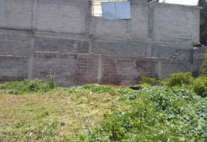 Foto de terreno habitacional en venta en granate , santo tomás chiconautla, ecatepec de morelos, méxico, 0 No. 01