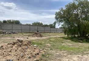 Foto de terreno habitacional en venta en granjas de guadalupe , granja guadalupe, tepeapulco, hidalgo, 0 No. 01