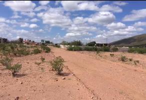 Foto de terreno habitacional en venta en  , granjas la abundancia, aldama, chihuahua, 14174061 No. 01