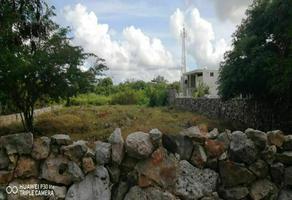 Foto de terreno habitacional en venta en  , granjas, mérida, yucatán, 20289232 No. 01