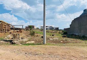 Foto de terreno habitacional en venta en gregorio gonzález , san josé de gracia, marcos castellanos, michoacán de ocampo, 0 No. 01
