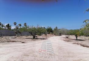 Foto de terreno habitacional en venta en gringo hill 6, gringos hill, los cabos, baja california sur, 0 No. 01