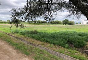 Foto de terreno comercial en venta en grupo san cristobal 300, las trojes, aguascalientes, aguascalientes, 16426870 No. 01
