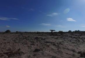 Foto de terreno habitacional en venta en  , guadalupe de reyes acozac, tecámac, méxico, 0 No. 01