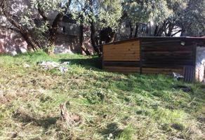 Foto de terreno habitacional en venta en guadalupe victoria 10 , santo tomas ajusco, tlalpan, df / cdmx, 16404779 No. 02