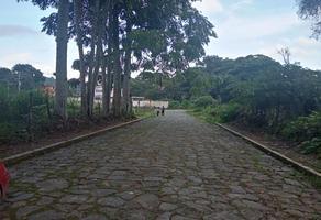 Foto de terreno habitacional en venta en guadalupe victoria 3, xico, xico, veracruz de ignacio de la llave, 0 No. 01