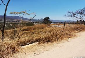 Foto de terreno habitacional en venta en  , guadalupe victoria, oaxaca de juárez, oaxaca, 0 No. 01