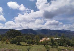 Foto de terreno habitacional en venta en  , guanajuato centro, guanajuato, guanajuato, 15422791 No. 01