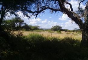 Foto de terreno habitacional en venta en  , guanajuato centro, guanajuato, guanajuato, 17202528 No. 01