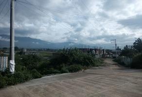 Foto de terreno habitacional en venta en  , guayabales, santa cruz amilpas, oaxaca, 0 No. 01