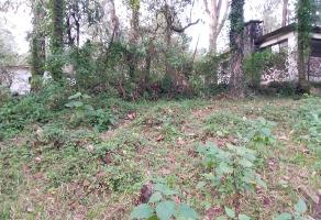Foto de terreno habitacional en venta en  , guayacahuala, huitzilac, morelos, 17798687 No. 01