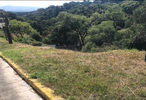 Foto de terreno habitacional en venta en guayavos agrios , lomas de zompantle, cuernavaca, morelos, 0 No. 01