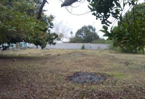 Foto de terreno habitacional en venta en guerrero , mata redonda, pueblo viejo, veracruz de ignacio de la llave, 4709417 No. 01