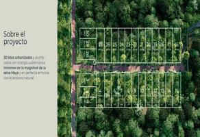 Foto de terreno habitacional en venta en gypsea market , la veleta, tulum, quintana roo, 0 No. 01