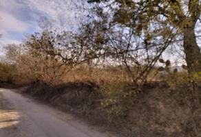 Foto de terreno habitacional en venta en hacienda de cieneguita del rio , cadereyta jimenez centro, cadereyta jiménez, nuevo león, 19198309 No. 01