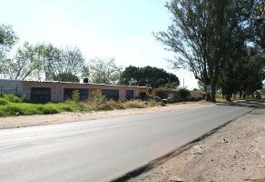 Foto de terreno comercial en venta en hacienda de la calerilla , la gigantera, san pedro tlaquepaque, jalisco, 14257010 No. 04