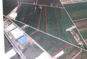 Foto de terreno comercial en venta en hacienda de santiago mextla , la joya de santiago mextla, huejotzingo, puebla, 7619390 No. 01