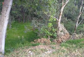 Foto de terreno habitacional en venta en  , hacienda de valle escondido, atizapán de zaragoza, méxico, 14118091 No. 01