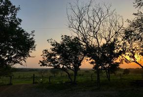 Foto de rancho en venta en hacienda palacho , palacho, tampico alto, veracruz de ignacio de la llave, 12155221 No. 01