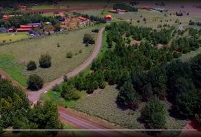 Foto de terreno habitacional en venta en hacienda san francisco, coto villas del trigal, terreno 6b, fracción calle 6b, san antonio, tapalpa, jalisco, 0 No. 01