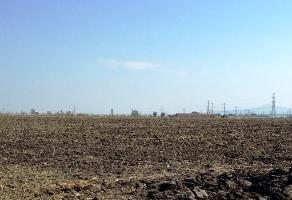 Foto de terreno industrial en venta en  , hacienda vieja del castillo, el salto, jalisco, 2622587 No. 01