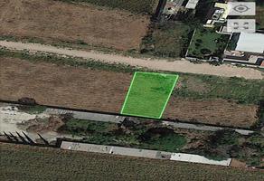 Foto de terreno habitacional en venta en  , haciendas el carrizal, irapuato, guanajuato, 0 No. 01
