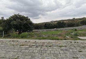 Foto de terreno comercial en venta en haras 8, campestre haras, amozoc, puebla, 20889921 No. 01