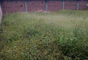 Foto de terreno habitacional en venta en  , hernández ochoa, coatepec, veracruz de ignacio de la llave, 16678357 No. 01