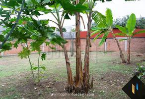 Foto de terreno habitacional en venta en  , hernández ochoa, coatepec, veracruz de ignacio de la llave, 0 No. 01
