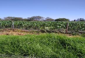 Foto de terreno habitacional en venta en hidalgo 26b, san pedro totoltepec, toluca, méxico, 0 No. 01