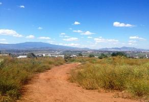 Foto de terreno comercial en renta en hidalgo 466, san jose del castillo, el salto, jalisco, 6285306 No. 01