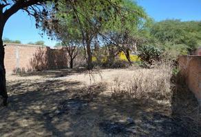 Foto de terreno habitacional en venta en hidalgo , centenario, villa de reyes, san luis potosí, 0 No. 01
