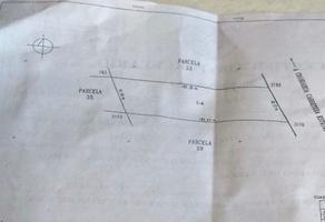 Foto de terreno habitacional en venta en  , hidalgo del parral centro, hidalgo del parral, chihuahua, 13966441 No. 01