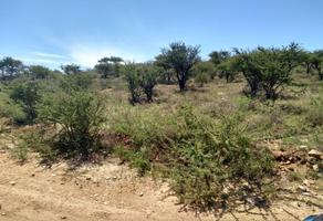 Foto de terreno habitacional en venta en  , hidalgo del parral centro, hidalgo del parral, chihuahua, 13966449 No. 01