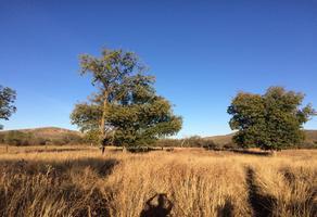 Foto de terreno habitacional en venta en  , hidalgo del parral centro, hidalgo del parral, chihuahua, 13966481 No. 01