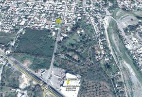 Foto de terreno comercial en renta en hidalgo , el roble, linares, nuevo león, 17780141 No. 01