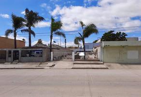Foto de terreno habitacional en venta en  , hidalgo, ensenada, baja california, 16764472 No. 01